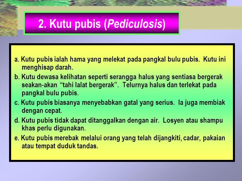 2. Kutu pubis ( Pediculosis ) a. Kutu pubis ialah hama yang melekat pada pangkal bulu pubis. Kutu ini menghisap darah. b. Kutu dewasa kelihatan sepert