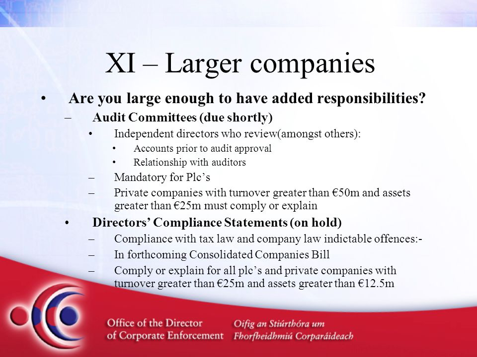 XI – Larger companies Are you large enough to have added responsibilities.