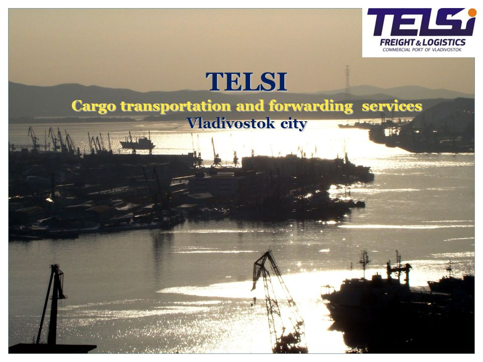 «The primary objective of TELSI Co., Ltd.