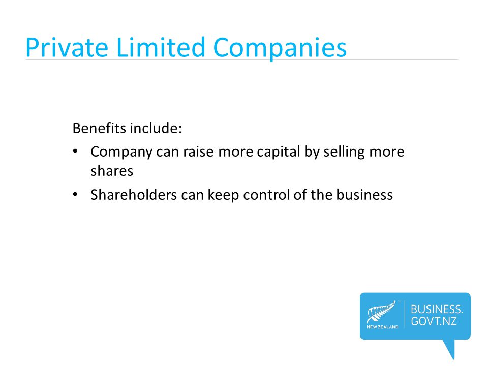 Private Limited Companies Drawbacks include: Accounts must be audited Limited companies are more difficult to set up Shares cannot be sold publicly on the stock market