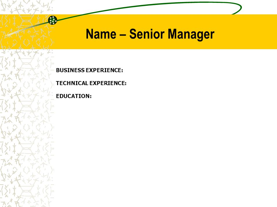 Name – Senior Manager BUSINESS EXPERIENCE: TECHNICAL EXPERIENCE: EDUCATION: