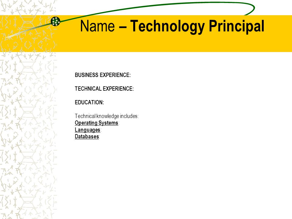Name – Technology Principal BUSINESS EXPERIENCE: TECHNICAL EXPERIENCE: EDUCATION: Technical knowledge includes: Operating Systems : Languages : Databases :