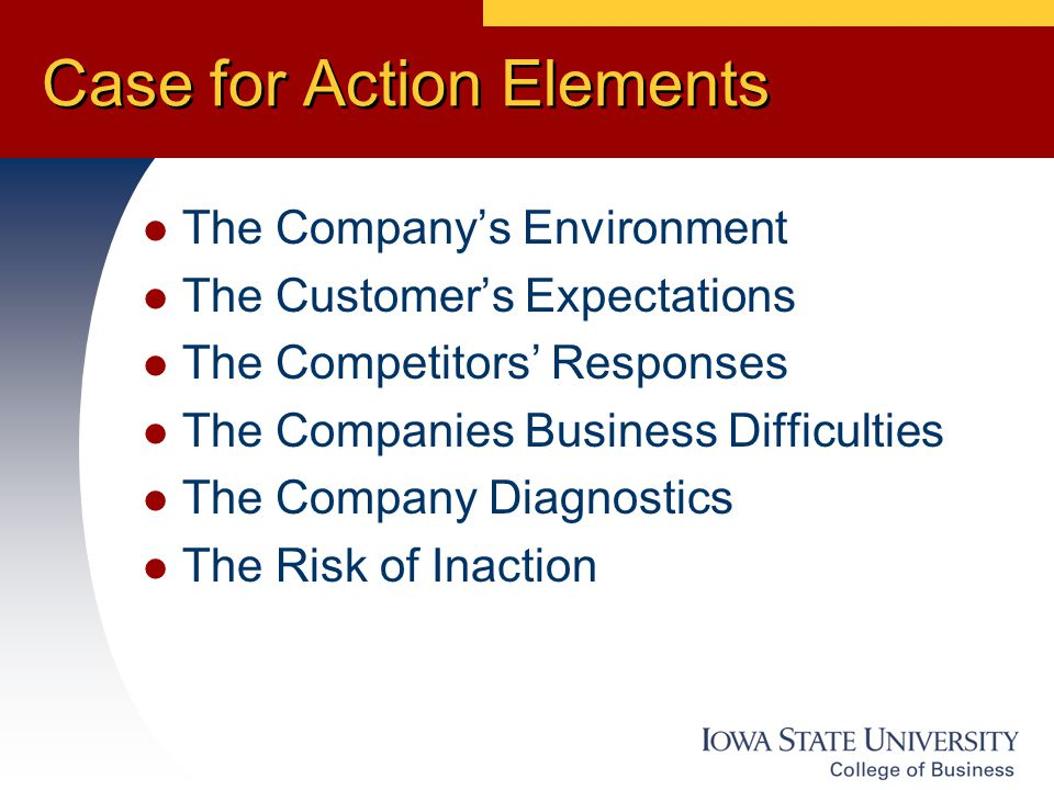 Case for Action Elements The Company's Environment The Customer's Expectations The Competitors' Responses The Companies Business Difficulties The Company Diagnostics The Risk of Inaction