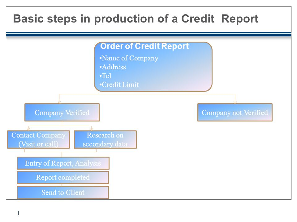 Basic contents of a credit report ●Identification Data;  Company Name  Address, and contact information  Registration Number ●Background data  Field of Activity (NACE, WF, HS, etc.)  Date of Establishment  Legal Structure  Number of employees  Capital size  Name of Management  Name of owners / shareholders and their ownership percentage  Financial Links