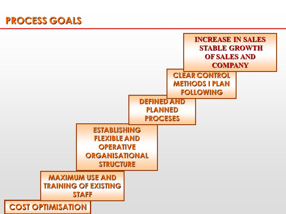 PROCESS GOALS COST OPTIMISATION MAXIMUM USE AND TRAINING OF EXISTING STAFF ESTABLISHING FLEXIBLE AND OPERATIVE ORGANISATIONAL STRUCTURE DEFINED AND PLANNED PROCESES CLEAR CONTROL METHODS I PLAN FOLLOWING INCREASE IN SALES STABLE GROWTH STABLE GROWTH OF SALES AND COMPANY