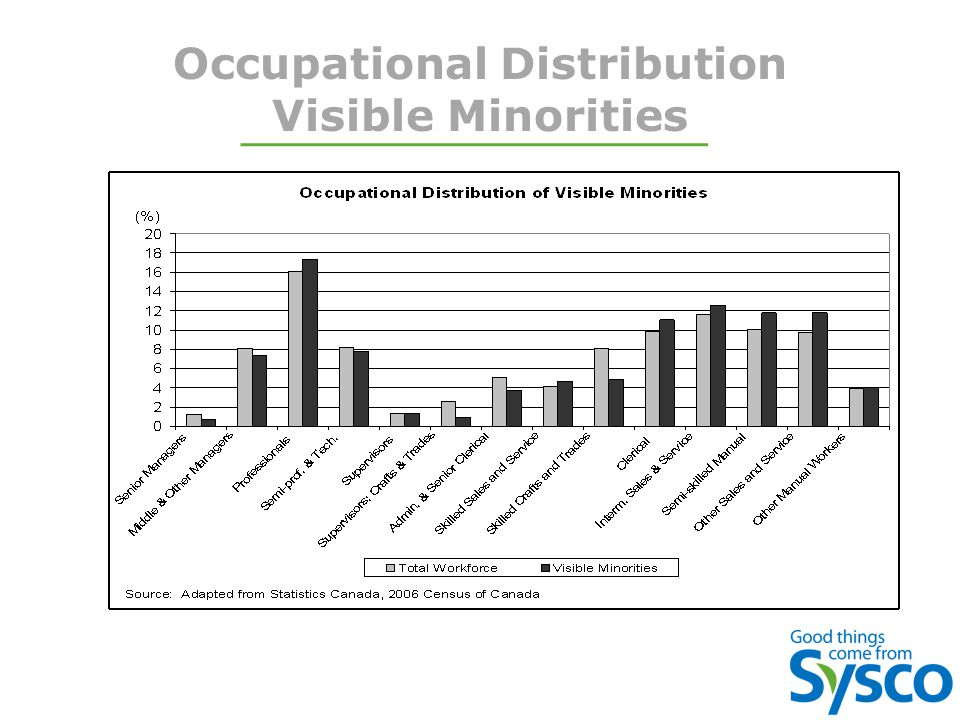Occupational Distribution Visible Minorities
