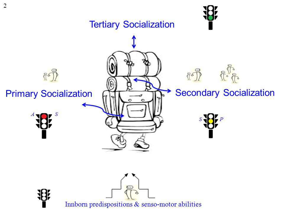 Tertiary Socialization Secondary Socialization Primary Socialization Innborn predispositions & senso-motor abilities 2 A S S P
