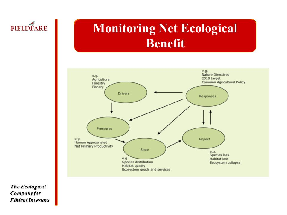 The Ecological Company for Ethical Investors Monitoring Net Ecological Benefit