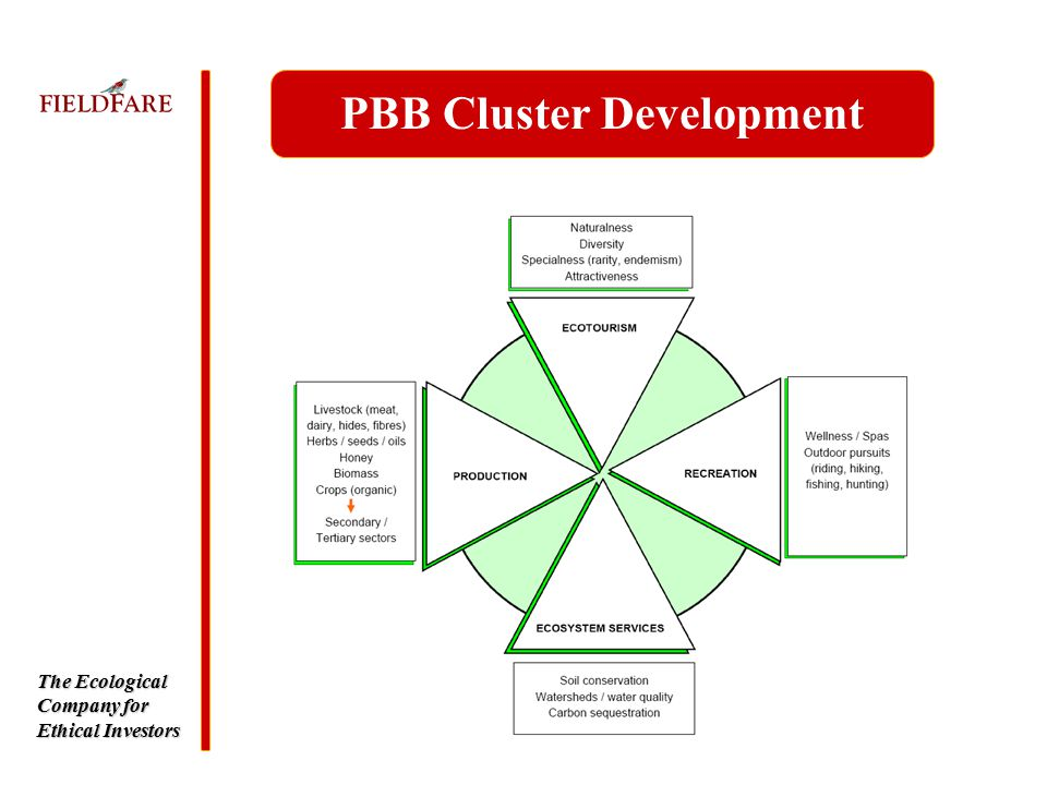 The Ecological Company for Ethical Investors PBB Cluster Development