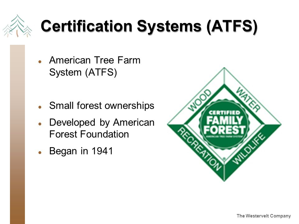 The Westervelt Company Certification Systems (ATFS) l American Tree Farm System (ATFS) l Small forest ownerships l Developed by American Forest Foundation l Began in 1941