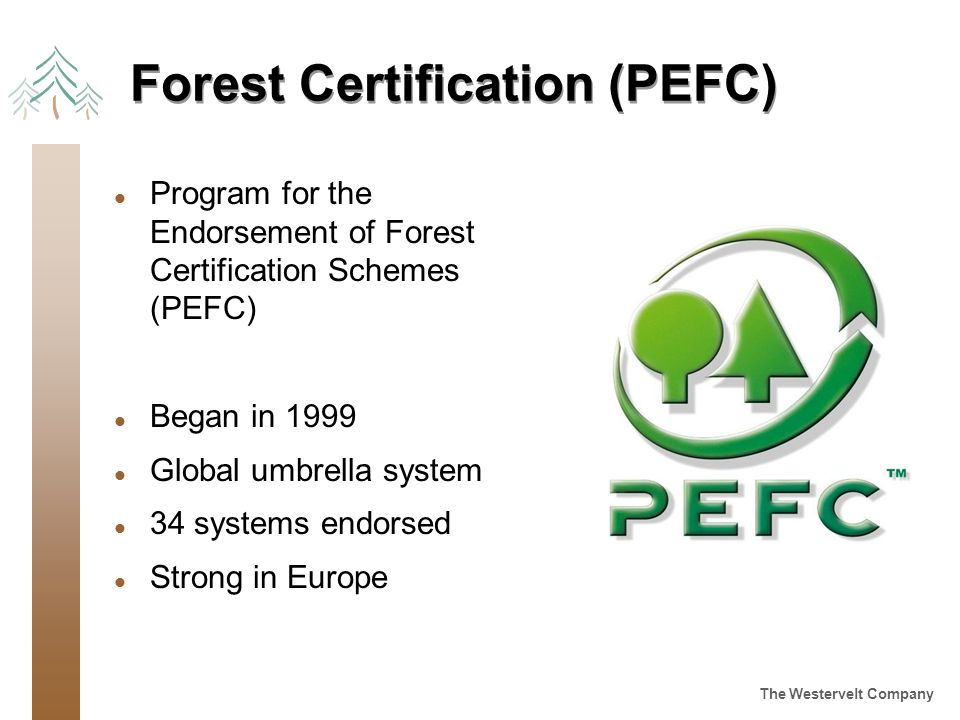 The Westervelt Company Forest Certification (PEFC) l Program for the Endorsement of Forest Certification Schemes (PEFC) l Began in 1999 l Global umbrella system l 34 systems endorsed l Strong in Europe