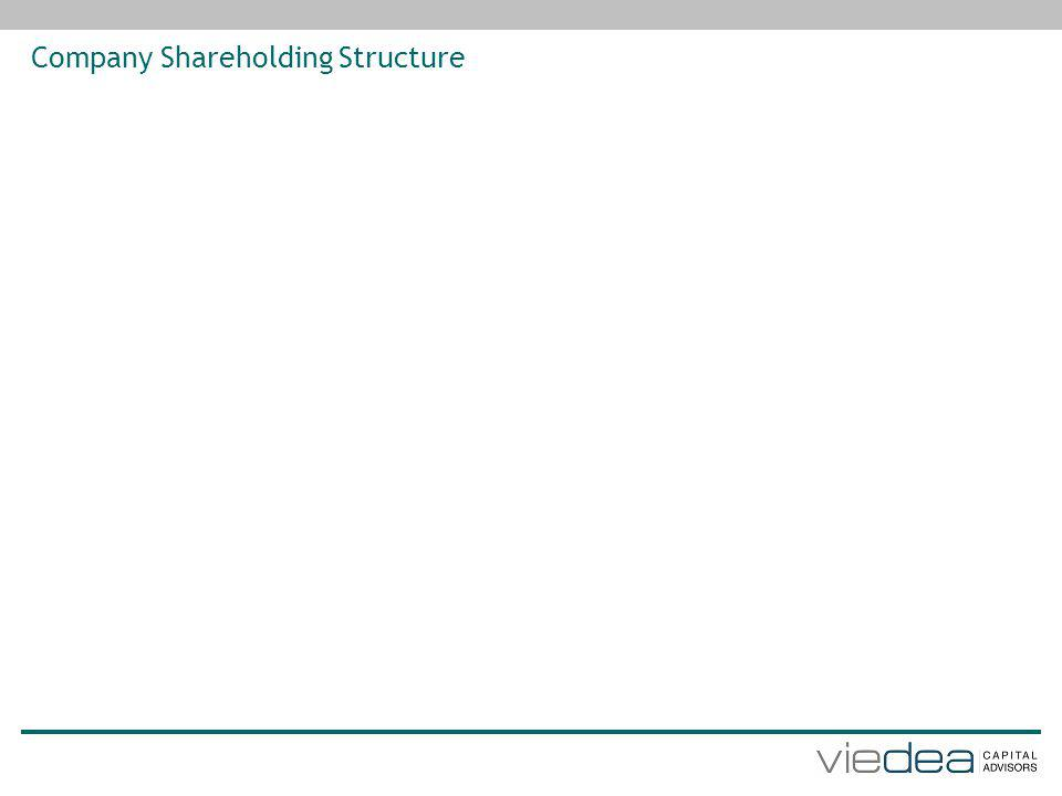 Company Shareholding Structure
