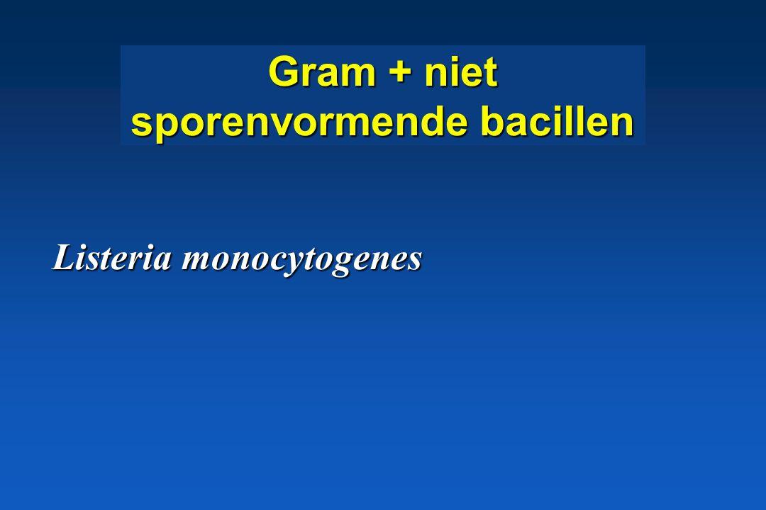 S. equi subsp. equi infections (droes) * Faryngitis, rhinitis * Lymphadenitis bloed