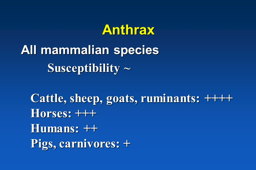 Kiem-gastheer interacties * Obligaat pathogeen * Resistent * Miltvuur  alle zoogdieren