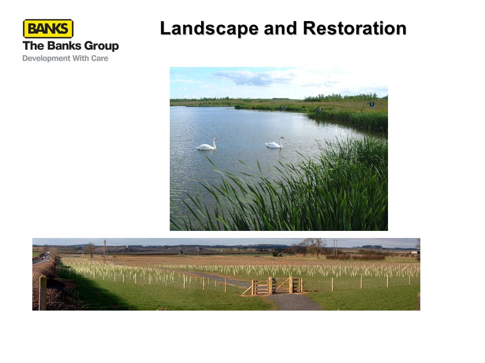 Landscape and Restoration