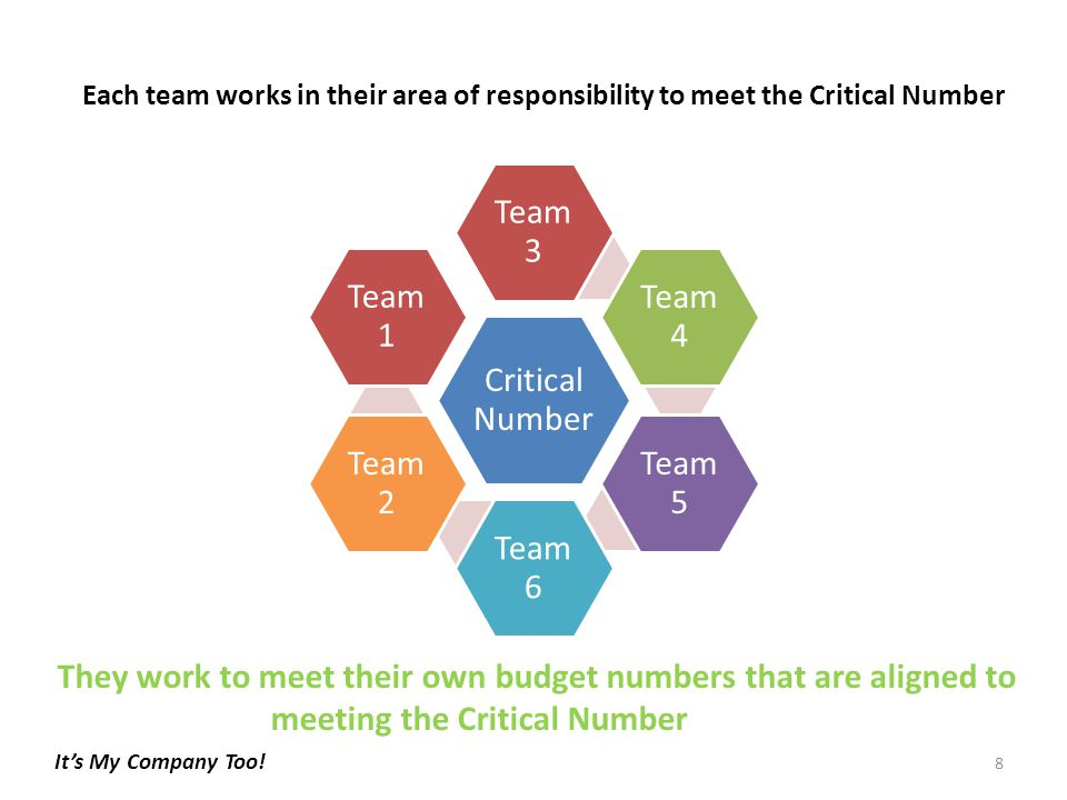 Critical Number Team 3 Team 4 Team 5 Team 6 Team 2 Team 1 Each team works in their area of responsibility to meet the Critical Number They work to meet their own budget numbers that are aligned to meeting the Critical Number 8 It's My Company Too!