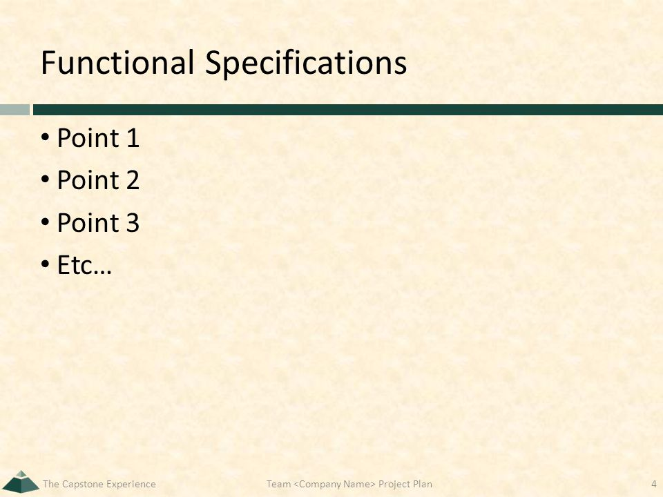 Functional Specifications Point 1 Point 2 Point 3 Etc… The Capstone ExperienceTeam Project Plan4