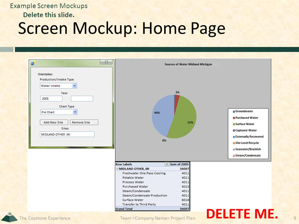 Screen Mockup: Home Page The Capstone Experience9 DELETE ME. Team Project Plan Example Screen Mockups Delete this slide.