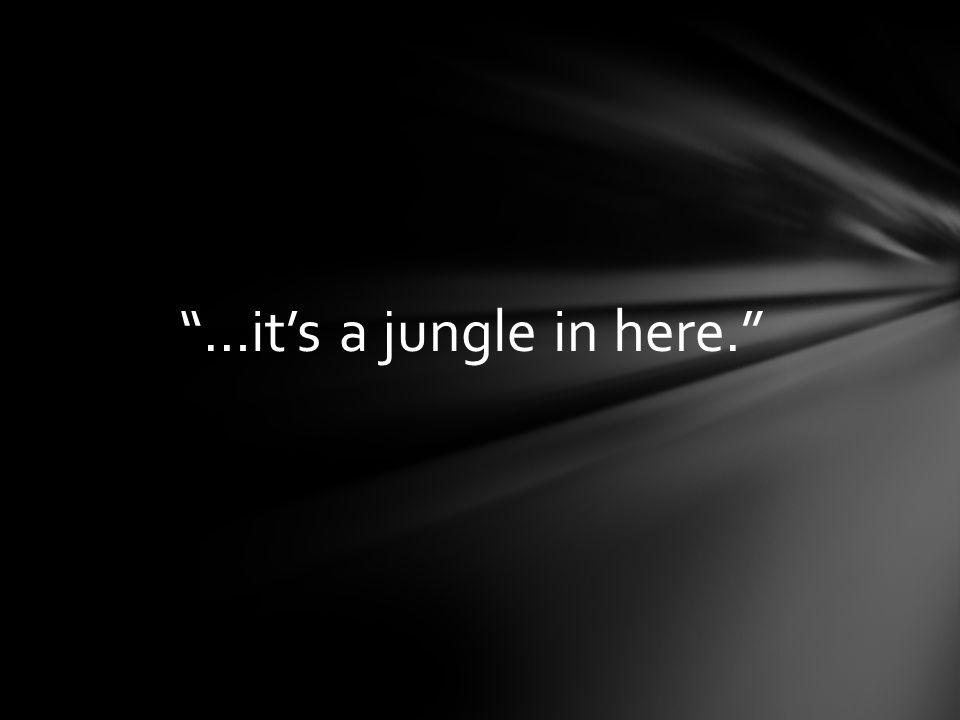 """""""…it's a jungle in here."""""""