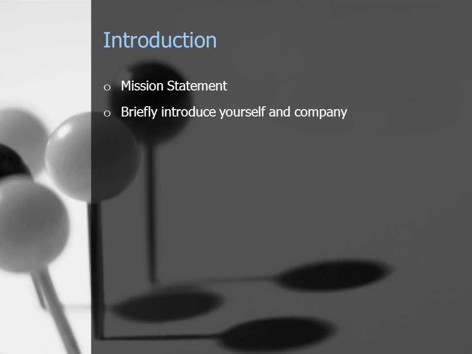 Introduction o Mission Statement o Briefly introduce yourself and company