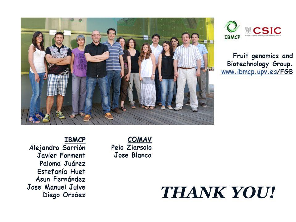 www.company.com THANK YOU.