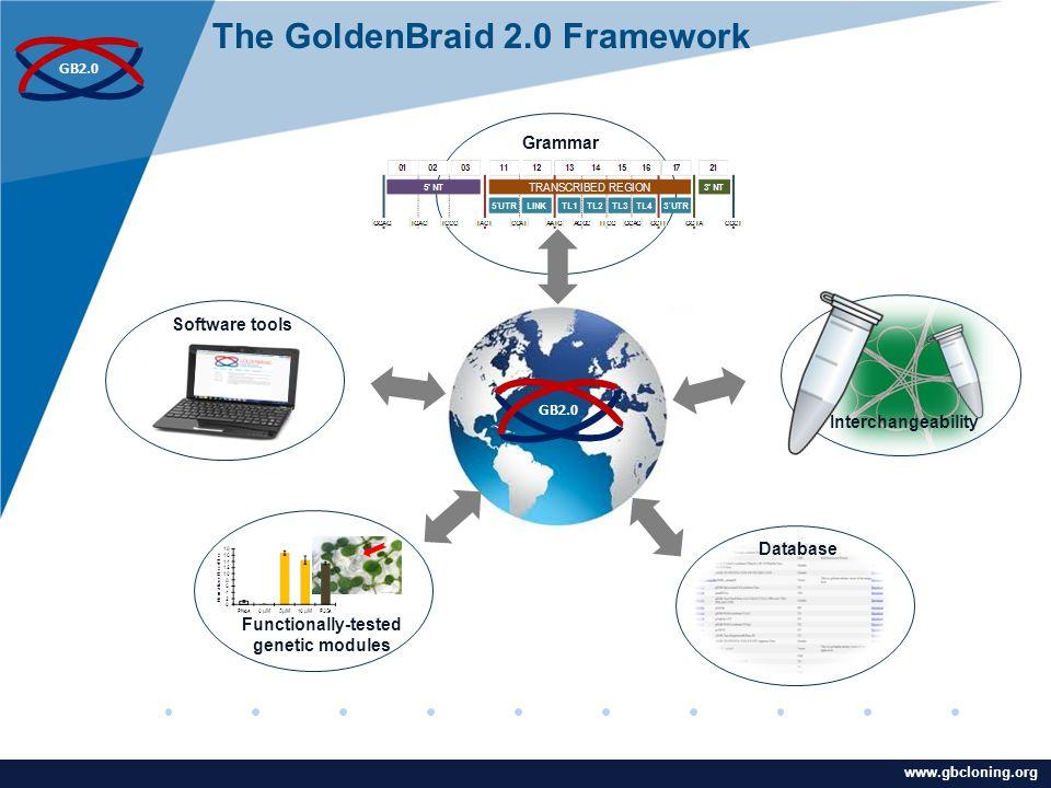 www.company.com www.gbcloning.org GB2.0 Grammar Database Functionally-tested genetic modules The GoldenBraid 2.0 Framework Software tools Interchangeability