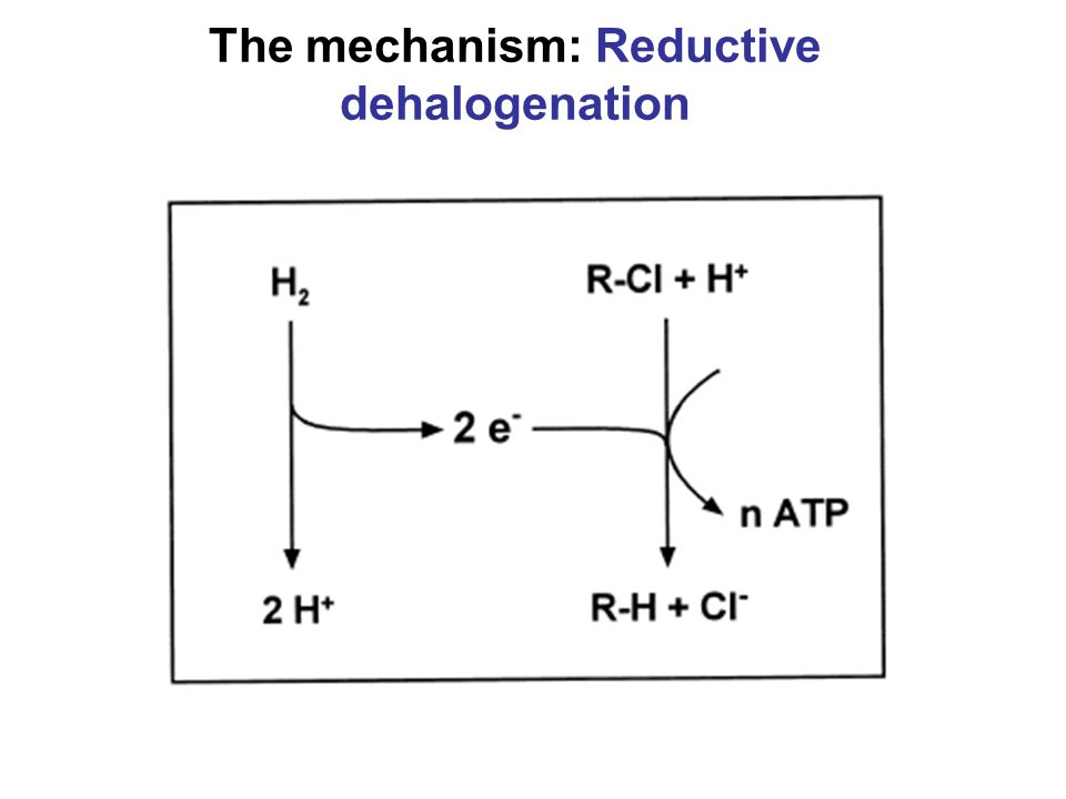 The mechanism: Reductive dehalogenation