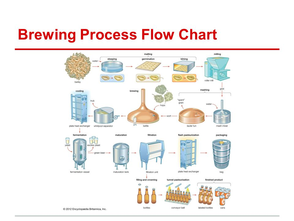 Brewing Process Flow Chart