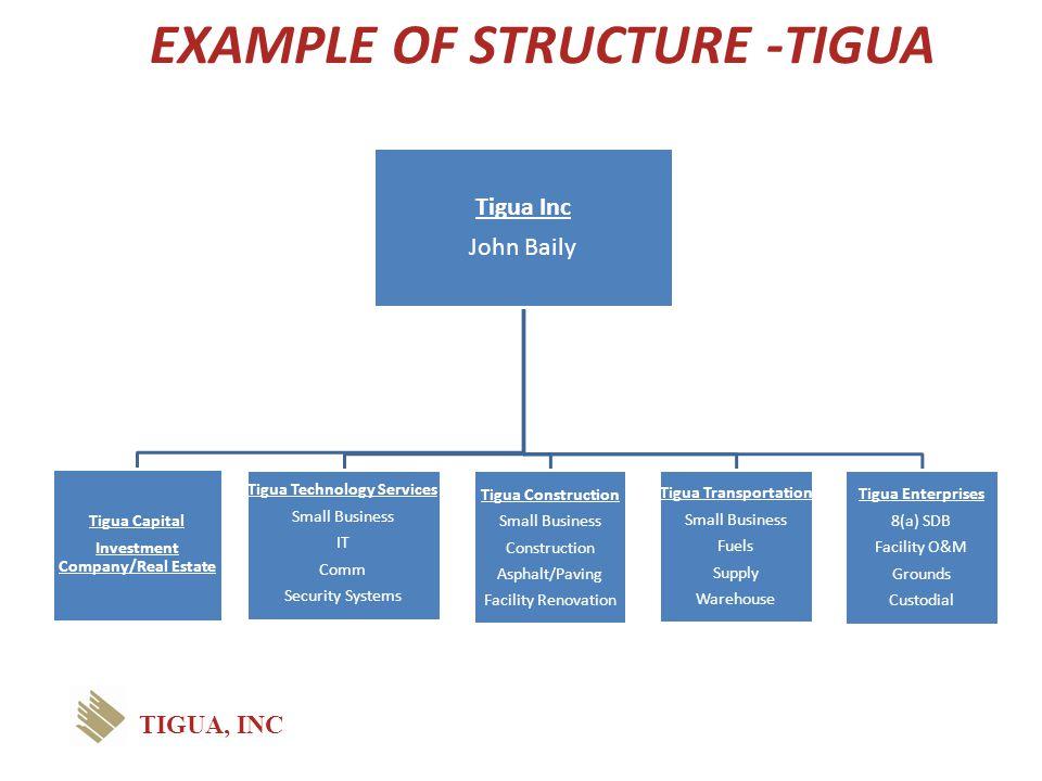 EXAMPLE OF STRUCTURE -TIGUA Tigua Inc John Baily Tigua Capital Investment Company/Real Estate Tigua Technology Services Small Business IT Comm Securit