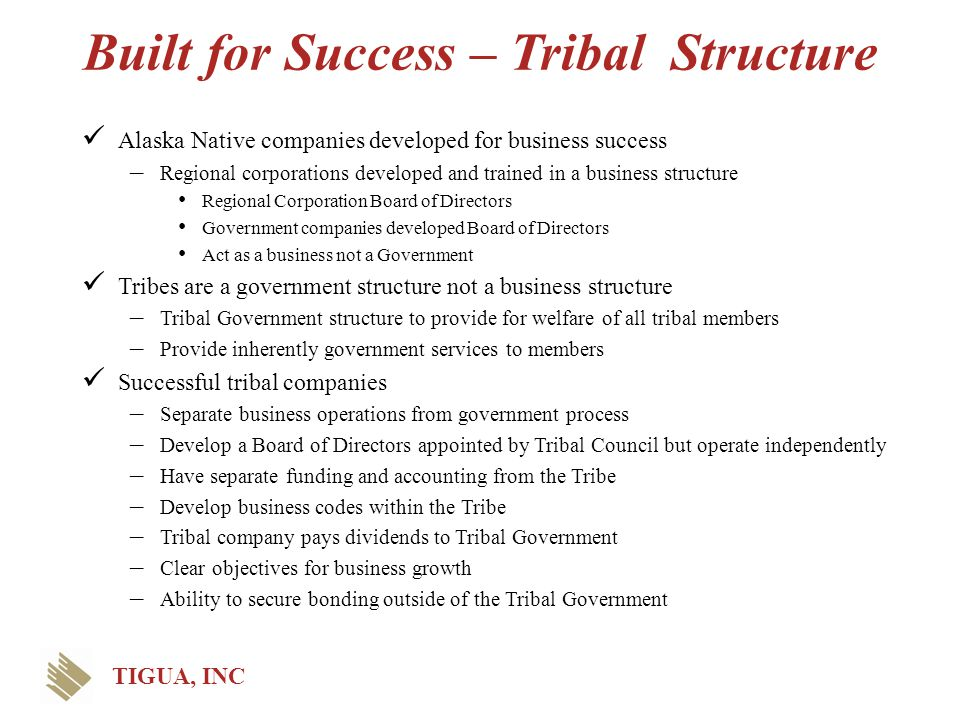 Built for Success – Tribal Structure Alaska Native companies developed for business success – Regional corporations developed and trained in a busines