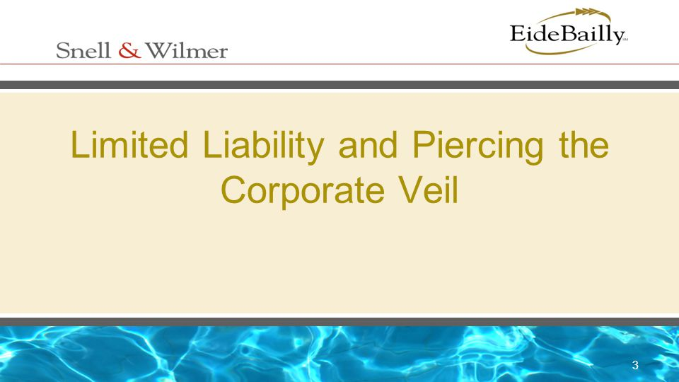 3 Limited Liability and Piercing the Corporate Veil
