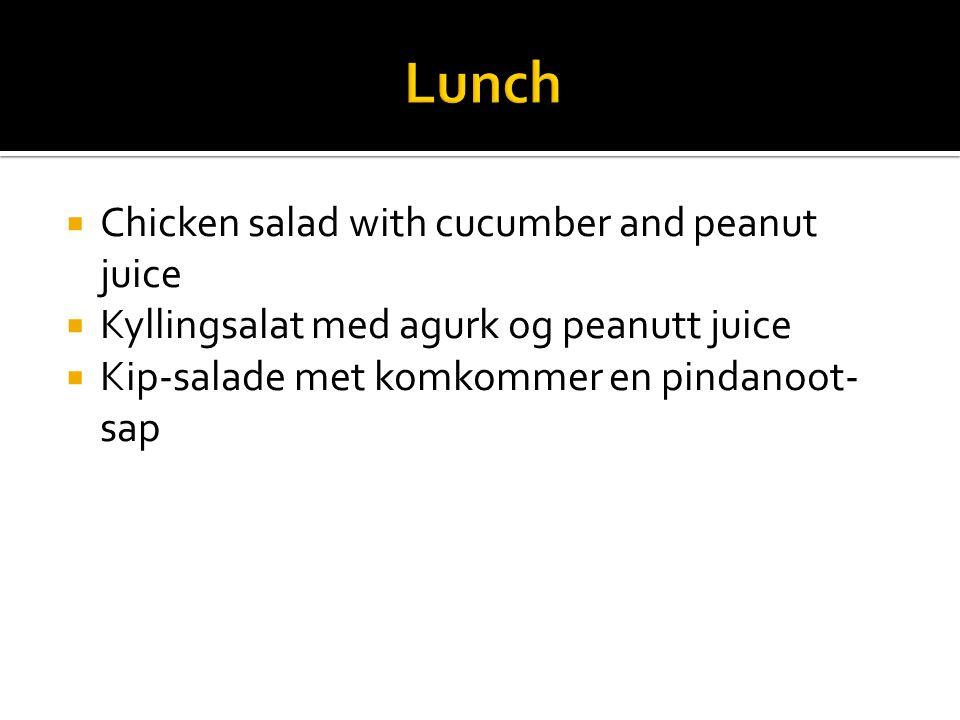  Chicken salad with cucumber and peanut juice  Kyllingsalat med agurk og peanutt juice  Kip-salade met komkommer en pindanoot- sap