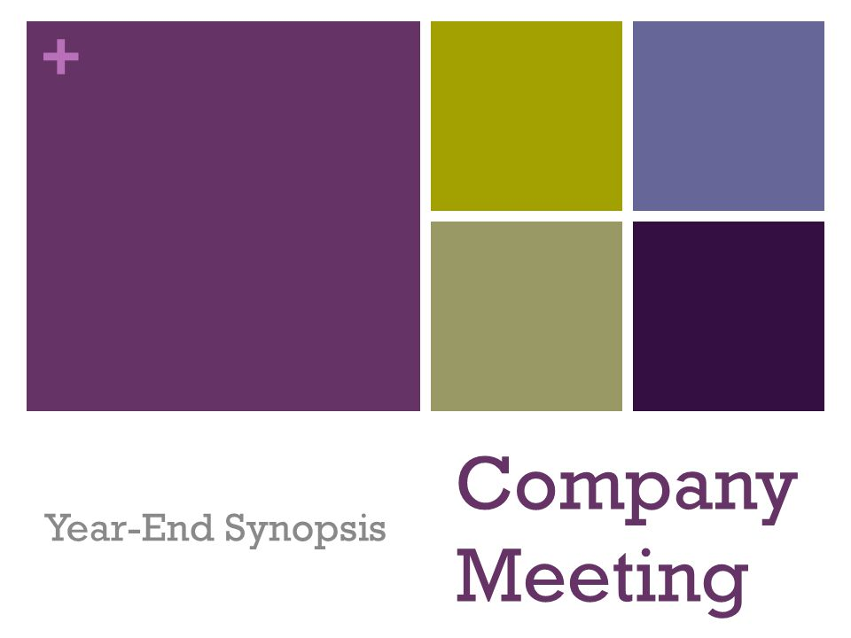 + Company Meeting Year-End Synopsis