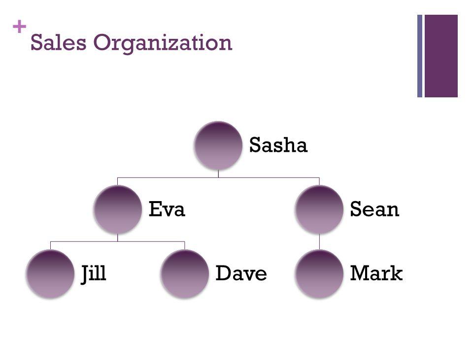 + Sales Organization Sasha Eva JillDave Sean Mark