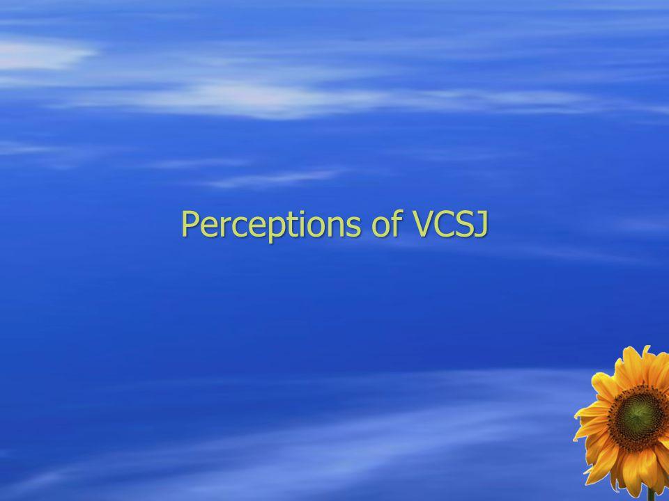 Perceptions of VCSJ
