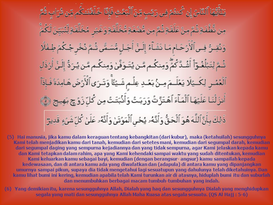(5)Hai manusia, jika kamu dalam keraguan tentang kebangkitan (dari kubur), maka (ketahuilah) sesungguhnya Kami telah menjadikan kamu dari tanah, kemudian dari setetes mani, kemudian dari segumpal darah, kemudian dari segumpal daging yang sempurna kejadiannya dan yang tidak sempurna, agar Kami jelaskan kepada kamu dan Kami tetapkan dalam rahim, apa yang Kami kehendaki sampai waktu yang sudah ditentukan, kemudian Kami keluarkan kamu sebagai bayi, kemudian (dengan berangsur- angsur) kamu sampailah kepada kedewasaan, dan di antara kamu ada yang diwafatkan dan (adapula) di antara kamu yang dipanjangkan umurnya sampai pikun, supaya dia tidak mengetahui lagi sesuatupun yang dahulunya telah diketahuinya.