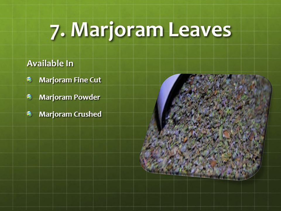 7. Marjoram Leaves Available In Marjoram Fine Cut Marjoram Powder Marjoram Crushed
