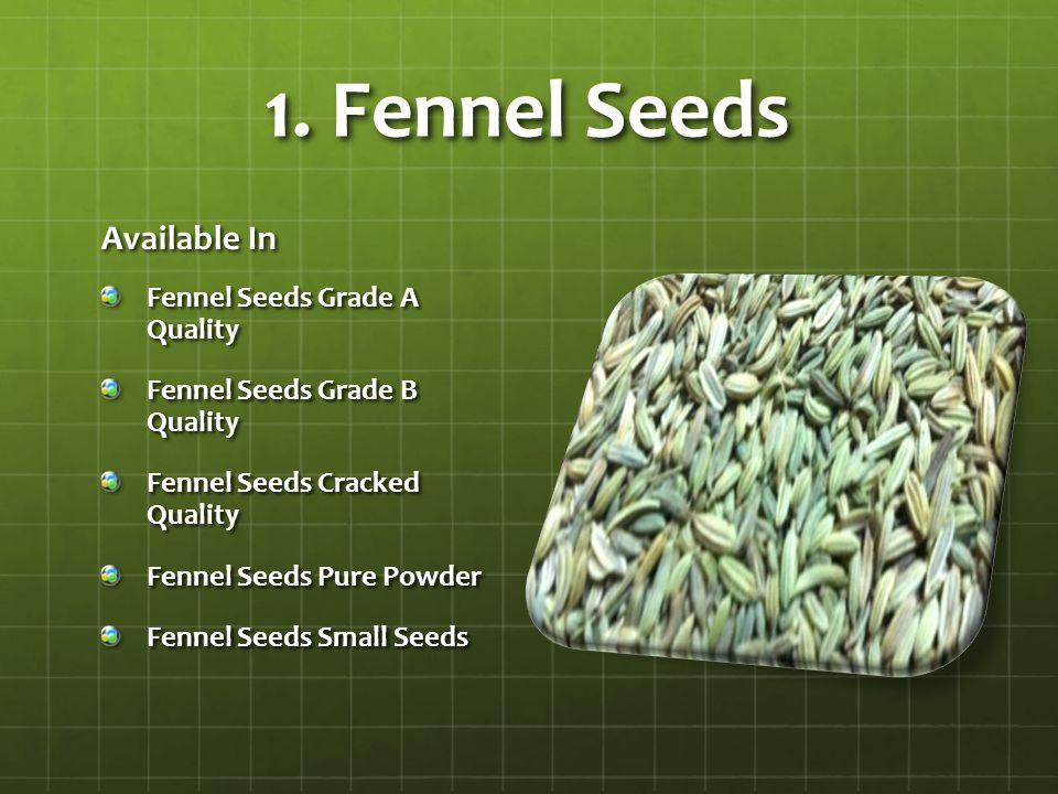 1. Fennel Seeds Available In Fennel Seeds Grade A Quality Fennel Seeds Grade B Quality Fennel Seeds Cracked Quality Fennel Seeds Pure Powder Fennel Se