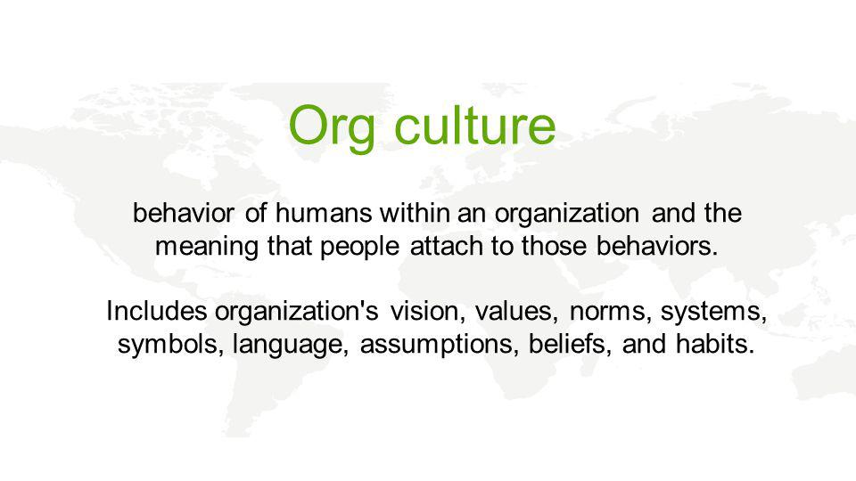 behavior of humans within an organization and the meaning that people attach to those behaviors.