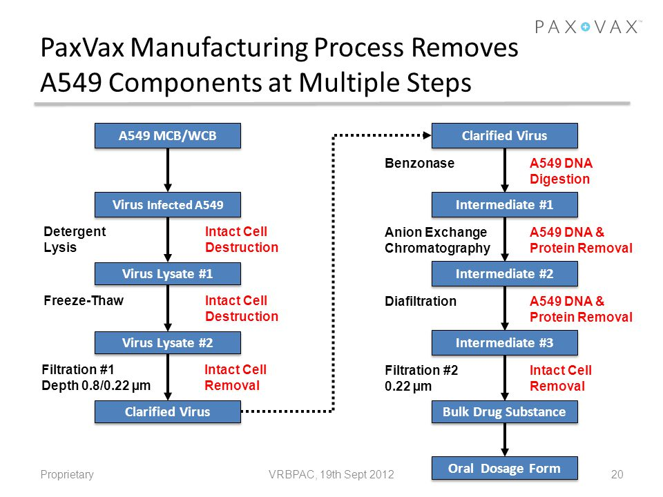 PaxVax Manufacturing Process Removes A549 Components at Multiple Steps Proprietary20 A549 MCB/WCB Virus Infected A549 Virus Lysate #1 Virus Lysate #2