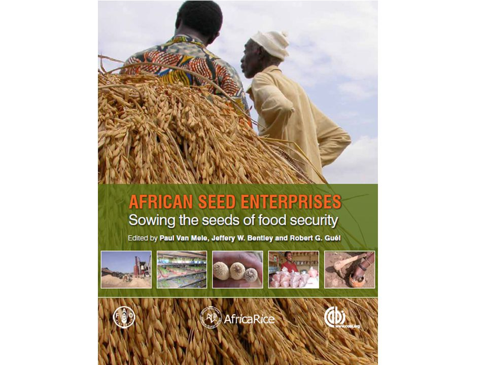 unfair competition with state agencies (ADPs) for past 30 years ADPs tend to produce the crops that are least profitable for the companies companies rely more on hybrid maize and vegetables although all produce various kinds of crop seed seed companies survive under competition with ADP-subsidised seed, and a debt load created by government seed procurement programmes Nigeria