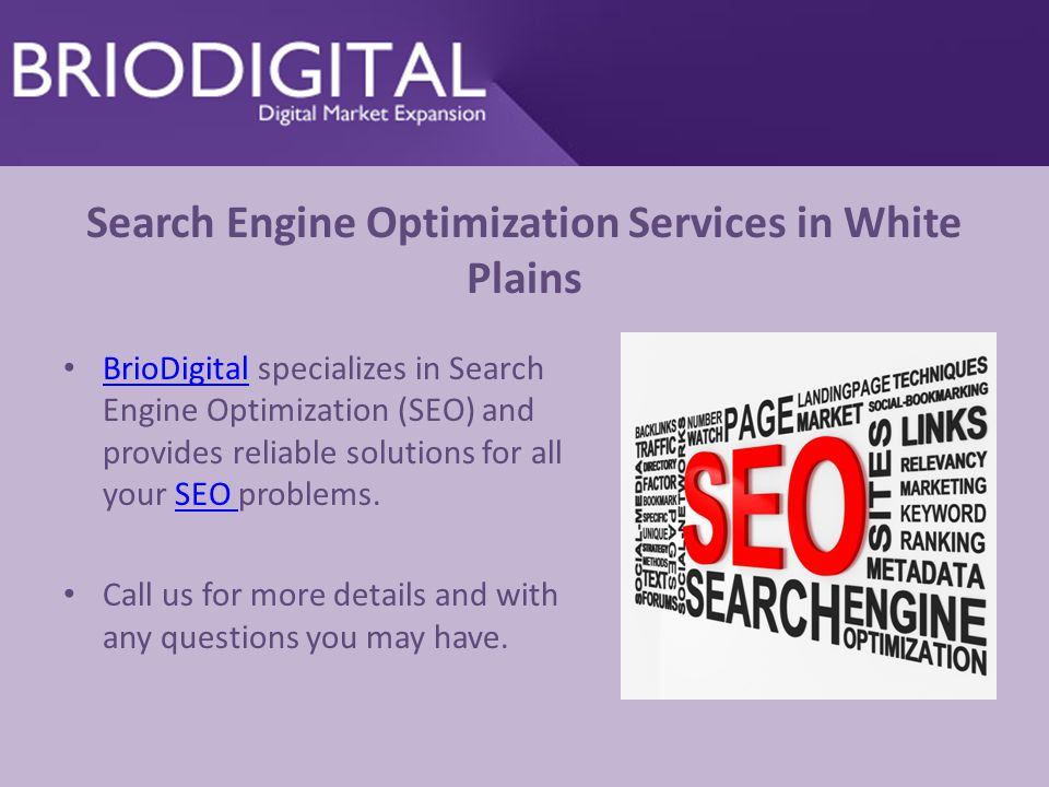 Search Engine Optimization Services in White Plains BrioDigital specializes in Search Engine Optimization (SEO) and provides reliable solutions for all your SEO problems.