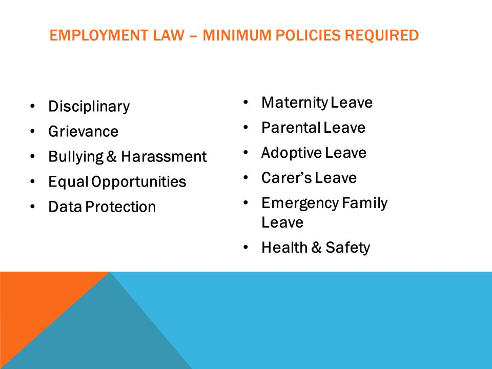 EMPLOYMENT LAW – MINIMUM POLICIES REQUIRED Disciplinary Grievance Bullying & Harassment Equal Opportunities Data Protection Maternity Leave Parental Leave Adoptive Leave Carer's Leave Emergency Family Leave Health & Safety