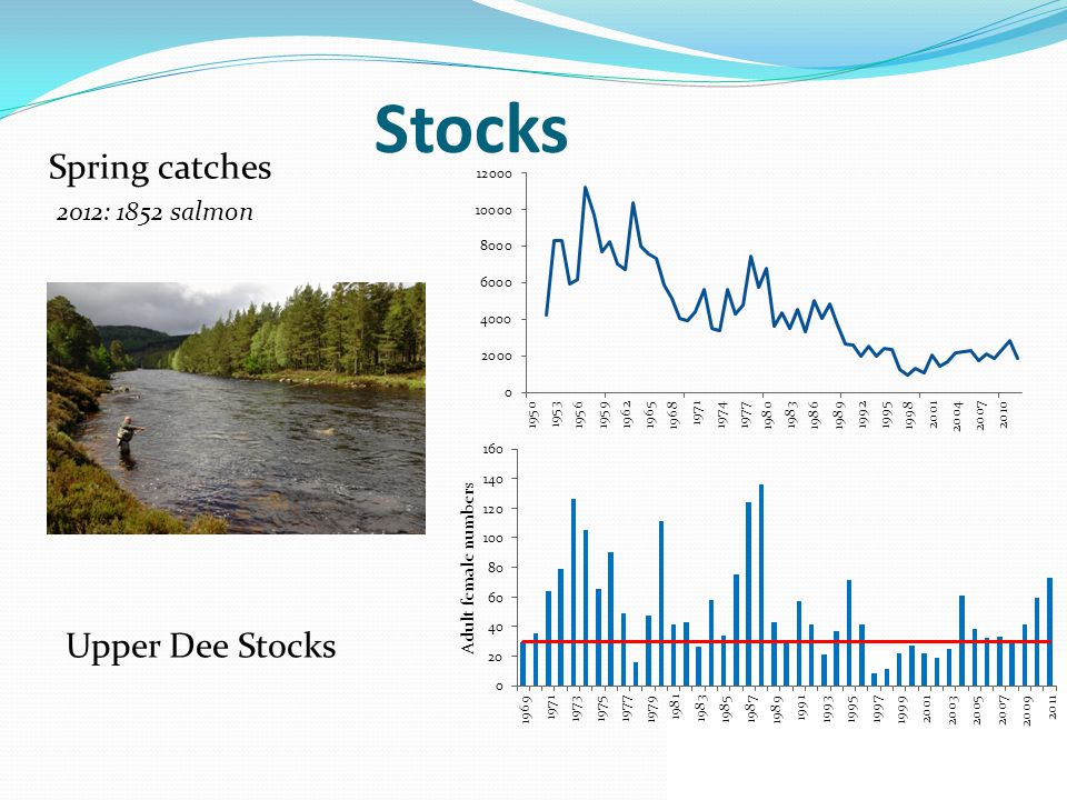 Stocks Spring catches Upper Dee Stocks 2012: 1852 salmon