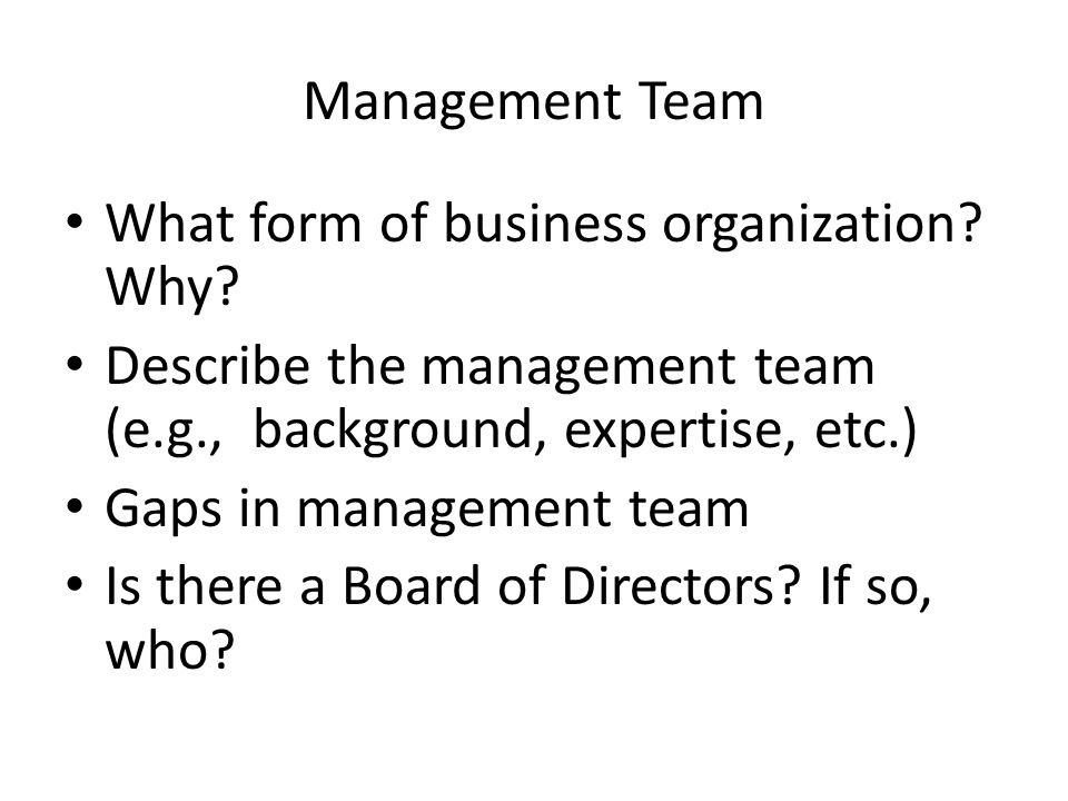 Management Team What form of business organization.