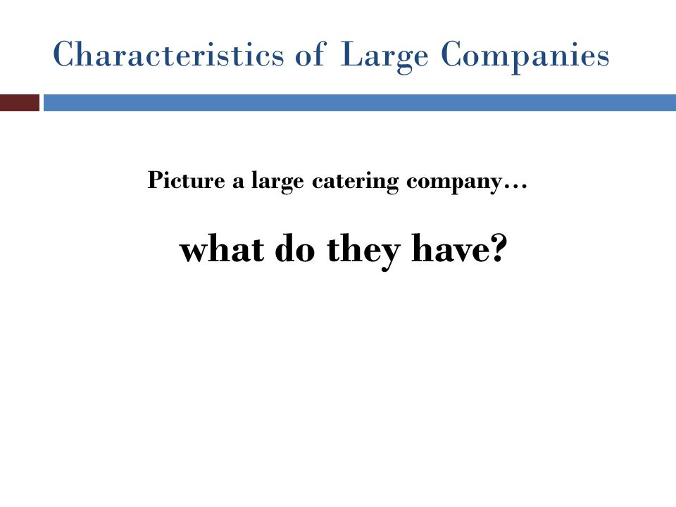 Characteristics of Large Companies Picture a large catering company… what do they have