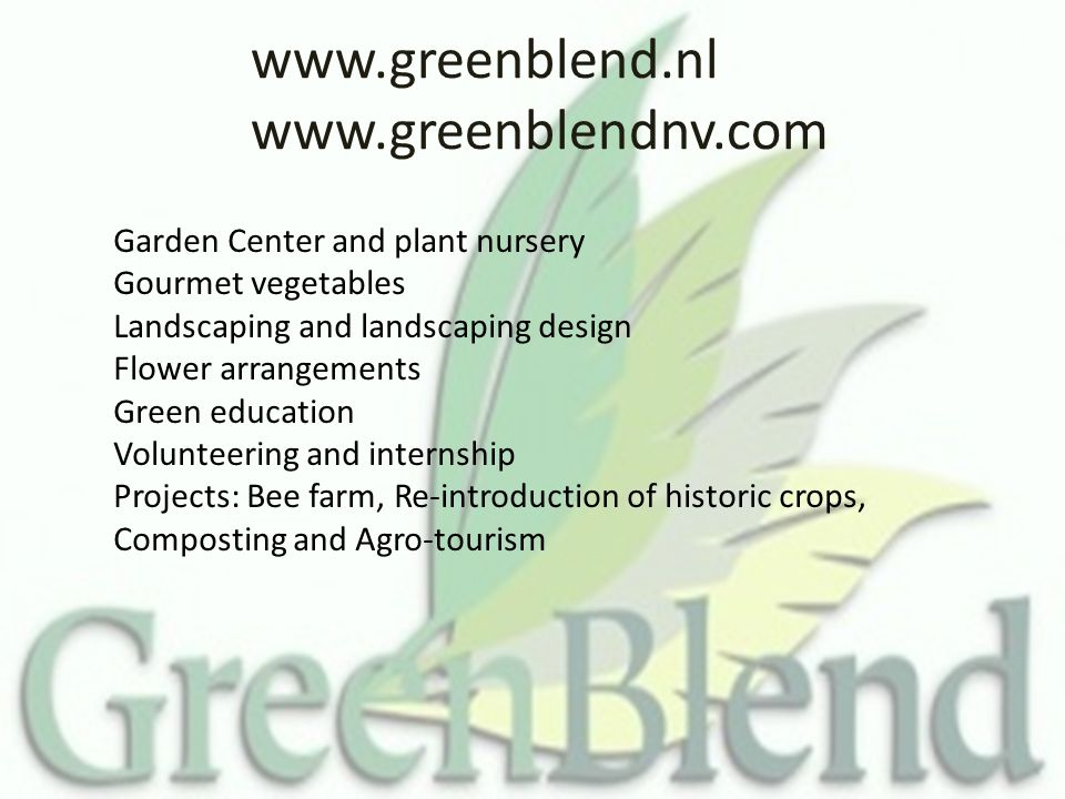 www.greenblend.nl www.greenblendnv.com Garden Center and plant nursery Gourmet vegetables Landscaping and landscaping design Flower arrangements Green education Volunteering and internship Projects: Bee farm, Re-introduction of historic crops, Composting and Agro-tourism