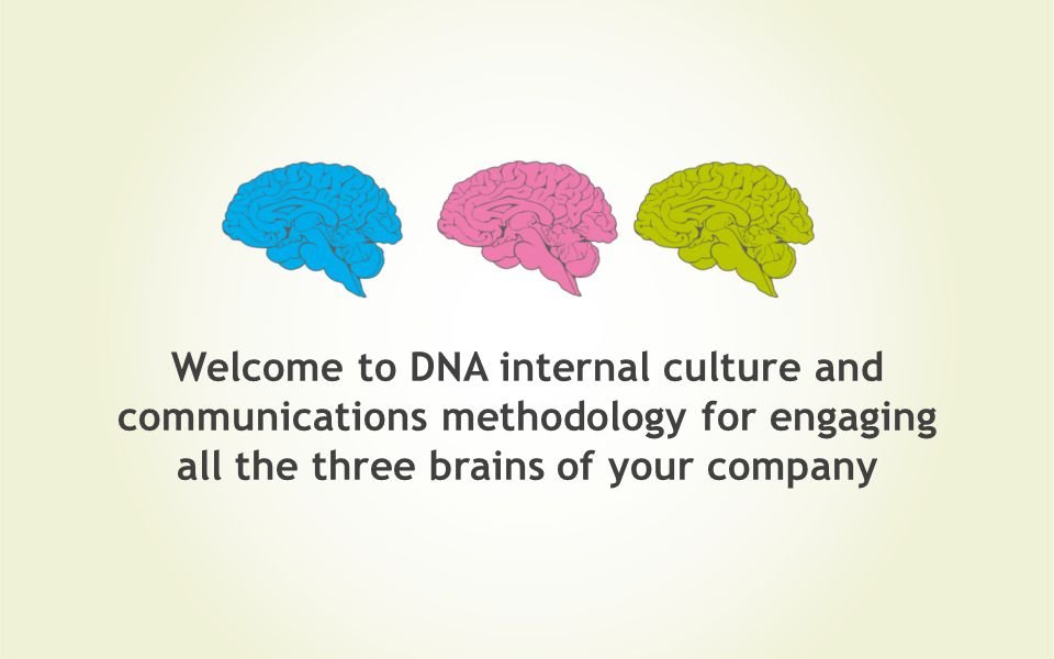 Welcome to DNA internal culture and communications methodology for engaging all the three brains of your company