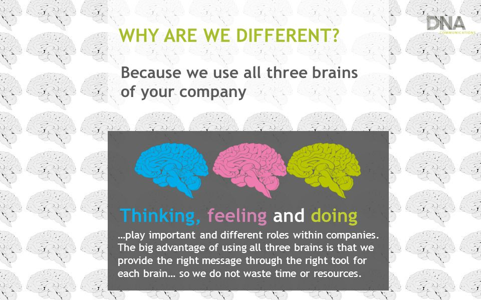 WHY ARE WE DIFFERENT? Because we use all three brains of your company …play important and different roles within companies. The big advantage of using