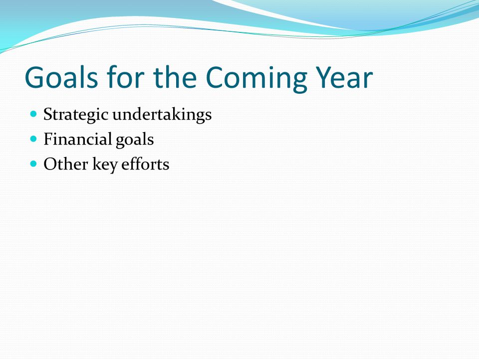 Goals for the Coming Year Strategic undertakings Financial goals Other key efforts
